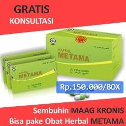 herbal untuk asam lambung