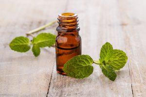 obat maag kronis tradisional paling ampuh