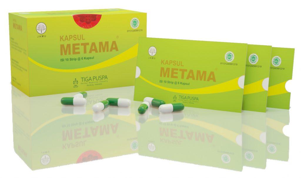tanaman obat herbal maag